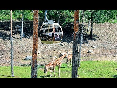 """Doppelmayr/Garaventa 8-MGD """"Safarigondel"""" Kolmården, Schweden (2011)"""