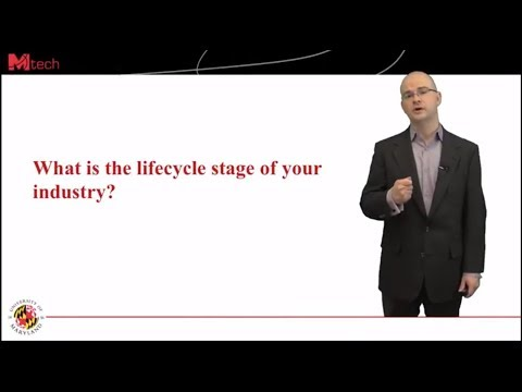What is the lifecycle stage of your industry