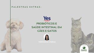 PREBIÓTICOS E SAÚDE INTESTINAL DE CÃES E GATOS - Verônica Lisboa, YesSinergy Agroindustrial para GMG