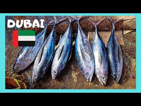 DUBAI'S Iconic 🦈🐟 Deira Fish Market (United Arab Emirates)