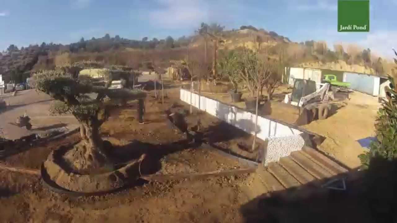 Nueva exposici n de jard pond youtube - Jardi pond terrassa ...