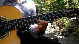 Quererte jamás, Bertín y Lalo Requinto tutorial, acordes y adornos
