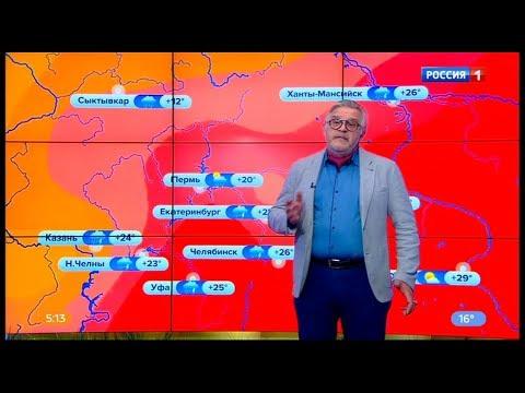 Погода на неделю 8 - 14 июля 2019 года.