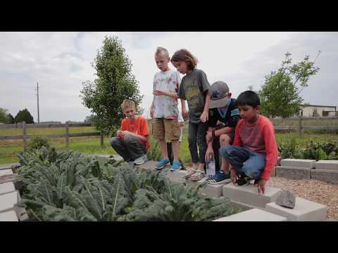 Greenville Montessori School