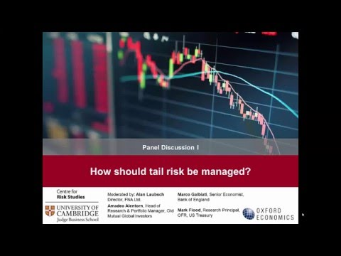 How should tail risk be managed? (panel discussion)
