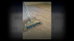 Carpet Cleaning Lutz Fl Carpet and Tile Cleaning
