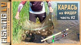 Ловля карася в июне, рыбалка на фидер и поплавок | Karūsu cope jūras līci