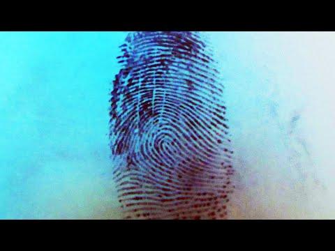 Как снять отпечатки пальцев в домашних условиях с предмета