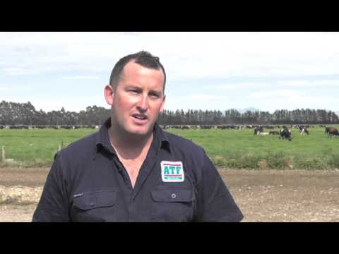 Glen Taylor: ATF Vision NZ