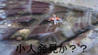 【UMA】謎の未確認生物! 走り抜ける小人か!? YouTubeで億万長者になる...