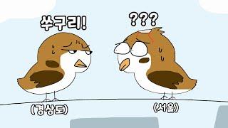 서울 참새가 경상도에 가면 생기는 일 영상툰