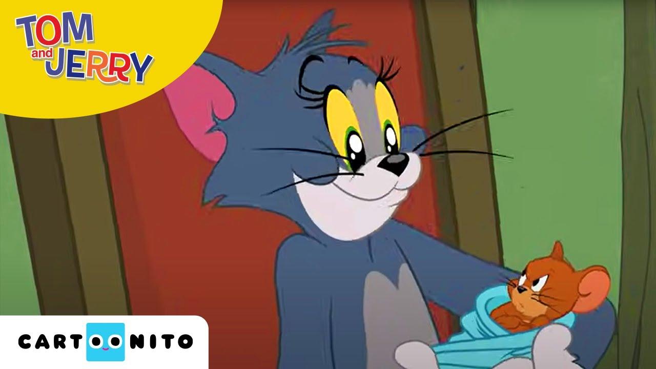 Spiele Tom Und Jerry