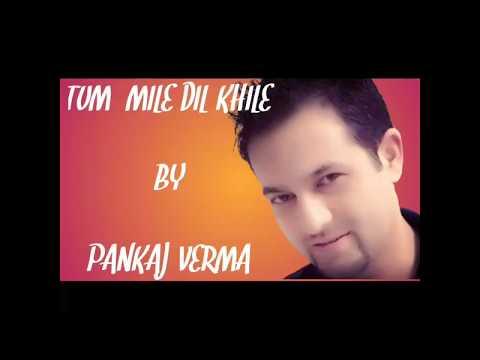 Tum Mile Dil Khile By Pankaj Verma