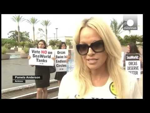 Pamela Anderson With PETA Against SeaWorld San Diego