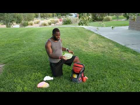 Las Vegas Disc Golf - In the Bag - Reggie Steward