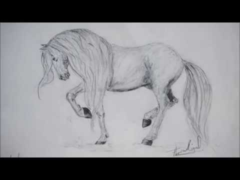 Dessins croquis chevaux youtube - Dessin cheval realiste ...