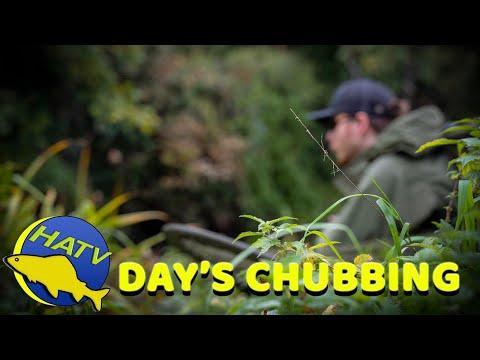 CHUB FISHING: A Day's Chubbing On A Small Stream   Hampshire Angling TV Short