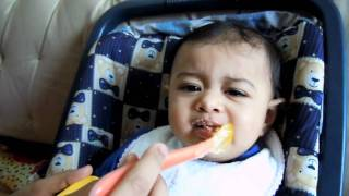 Eating Wheat Apple Cerelac First Time #1 - 15.5.11