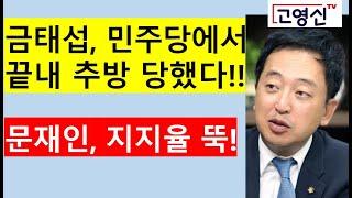 [고영신TV]금태섭 징계, 소신발언 비문 싹자른다는 메시지(출연; 이종근 전 데일리안 편집국장)