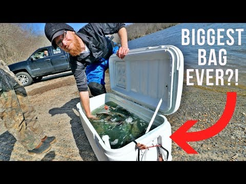 I STILL Can't Believe It || We Caught MONSTERS || Jon Boat Bass Fishing Tournament #2