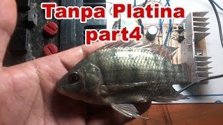 Cara Membuat Strum Ikan Tanpa Platina - Part 4