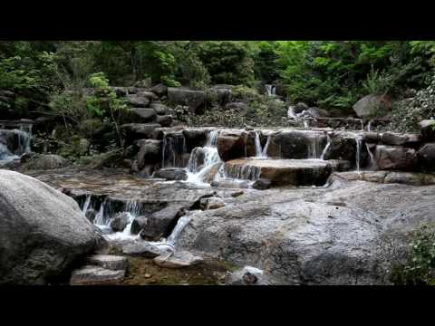 Relaxing japanese Waterfall Scene - One Hour, HD, original sound of water and some birds