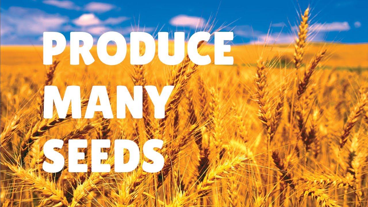 Produce Many Seeds:  March 21, 2021 Worship Livestream