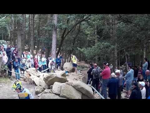 Iwan Roberts Section 12 Hook Wood