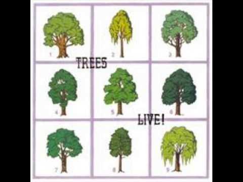Trees live (1971) Folk band full album.