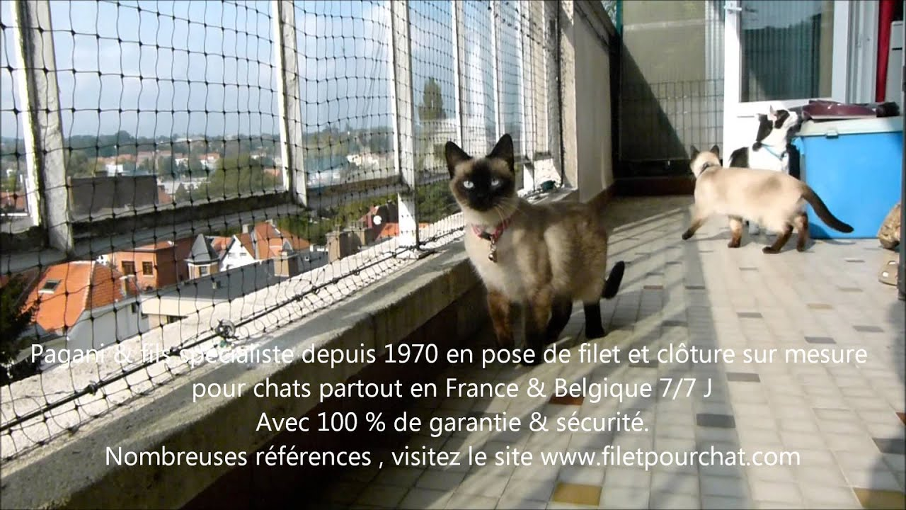 filet de securit pour chat sur le balcon youtube. Black Bedroom Furniture Sets. Home Design Ideas