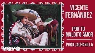 Vicente Fernández - Puro Cachanilla