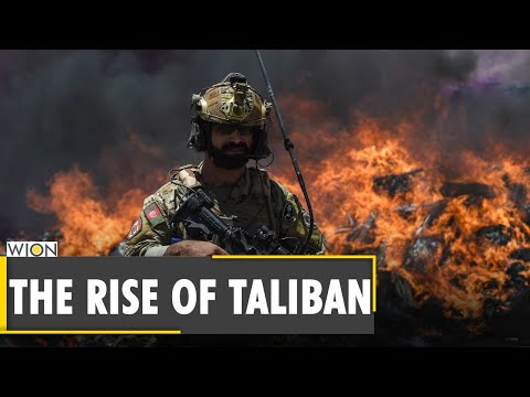 Afghanistan: How wealthy is the Taliban? Afghan forces | US Troops | Strategic provinces |WION News