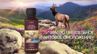 СУПЕР Алтайские травы в СУПЕР продуктах компании Батэль1111