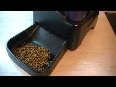 Автокормушка для кошек и собак - YouTube