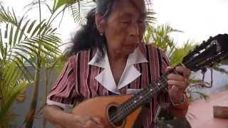 TẦU ANH QUA NÚI-St:Phan lạc Hoa - Mandolin  Việt Dung