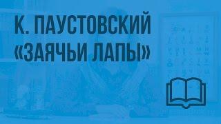 К. Паустовский «Заячьи лапы». Видеоурок по чтению 4 класс