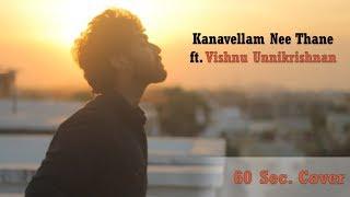 Kanavellam Nee Thane Video Song ft. Vishnu Unnikrishnan