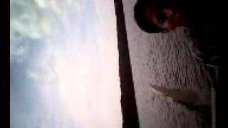 pantai bedul banyuwangi