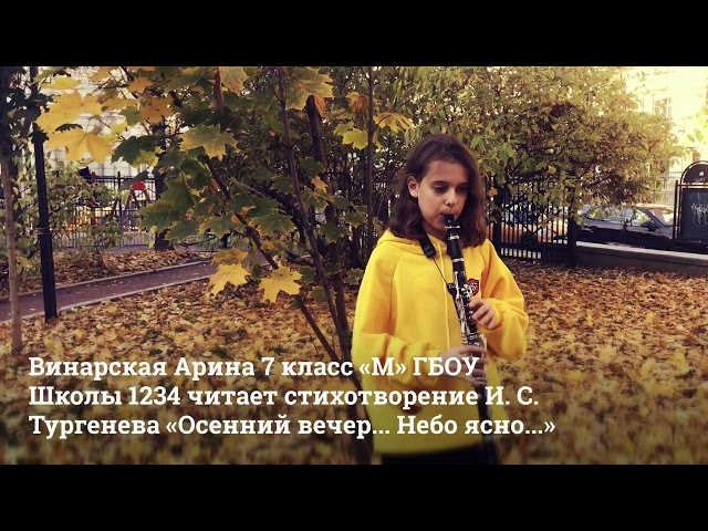 Изображение предпросмотра прочтения – АринаВинарская читает произведение «Осенний вечер...Небо ясно» И.С.Тургенева