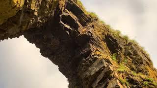 Командорские острова: Арка Стеллера 2020