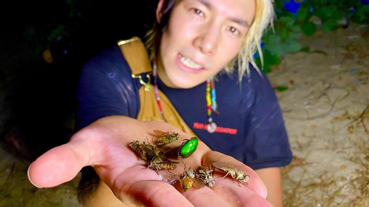 無人島で飛んでくる大量の虫を全て食べてみた【蜂、蛾、蝉、カナブン…】