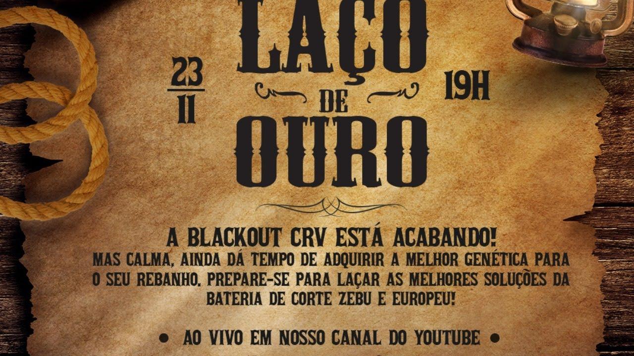 💥 LIVE LAÇO DE OURO - CORTE💥