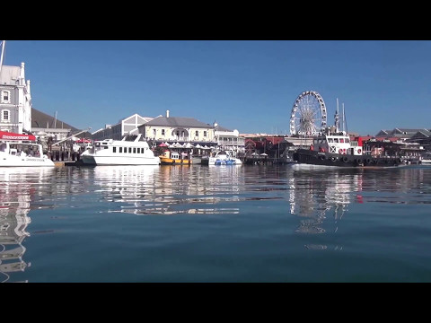 Cape Town: The Waterfront Harbour Cruise
