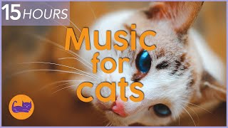(NO ADS) 15 HOURS of Relaxing Cat Music  Instant Relaxation