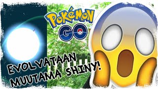EVOLVATAAN SHINYJA! - POKEMON GO