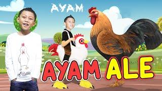 LAGU AYAM - ALE I LAGU ANAK INDONESIA