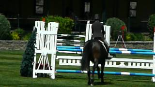 Ellie 1.20 m speed Spruce Meadows 2012