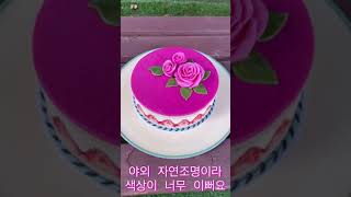 케이크 색상이 예술이죠…