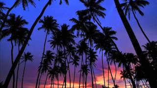Kasey Taylor-Coconuts (Original mix)