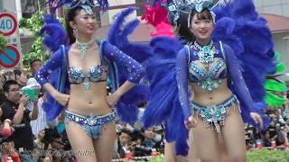 Download Video kobecco  神戸まつり2018  SAMBA CARNIVAL (サンバカーニバル) MP3 3GP MP4